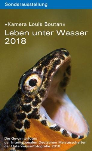 Leben Unter Wasser 2018