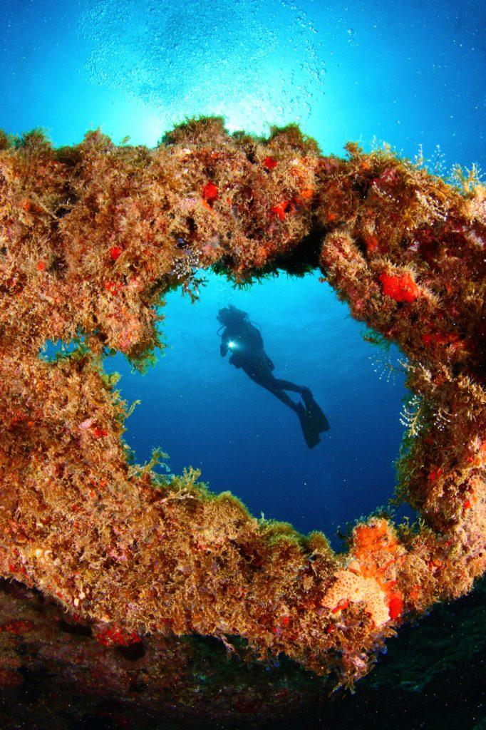 Kombinierte Weltmeisterschaft der Unterwasserfoto- und Videografie